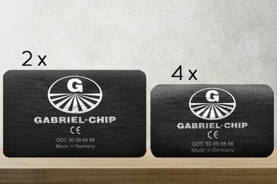 Gabriel- Chip
